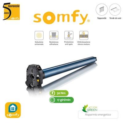 Motore per tapparelle con manovra di soccorso Somfy LT50 CSI WT 30/17 art. 1045004